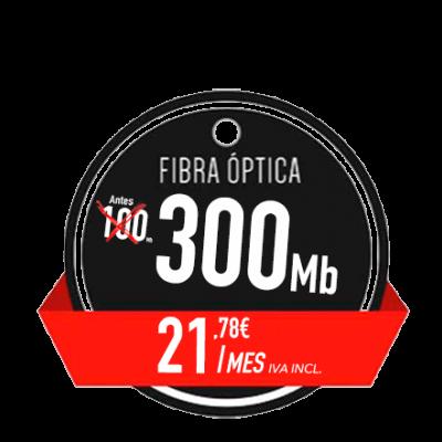 2021-300MB